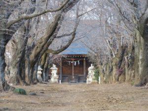 鹿窪香取神社社殿