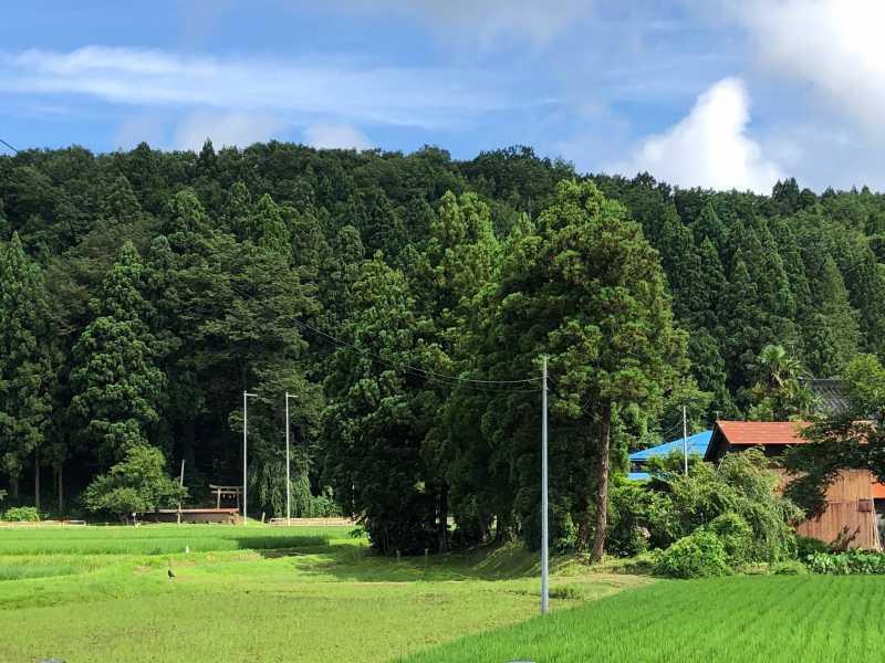 小野神社遠景