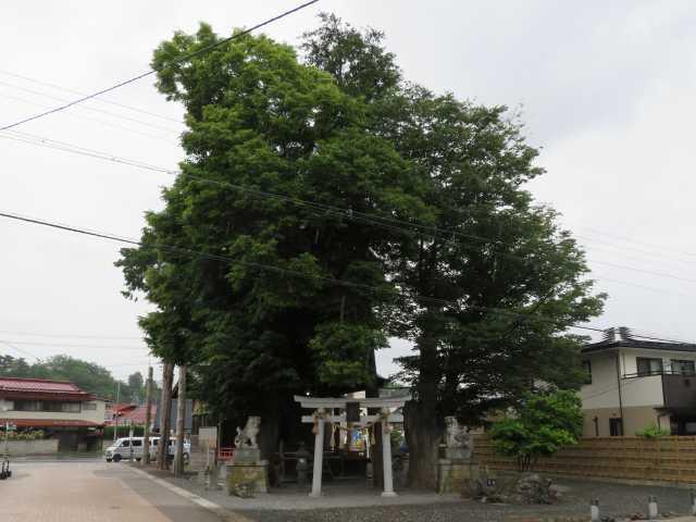 三輪神社社叢