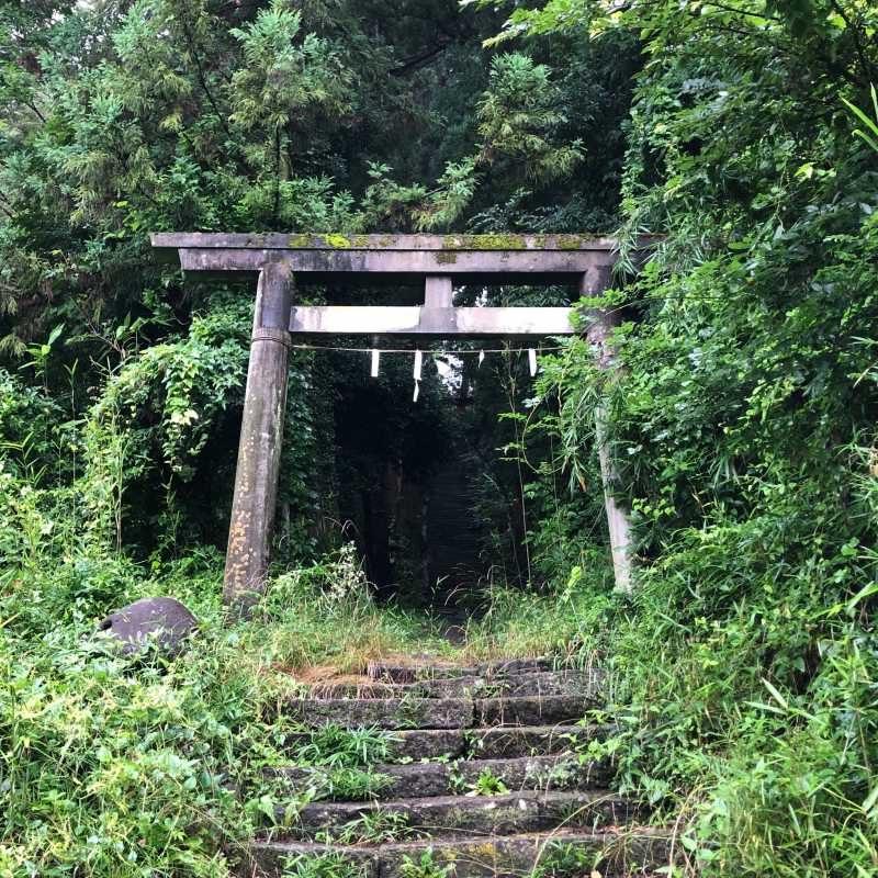 月夜野神社鳥居