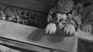 獅子に見立てた菊水