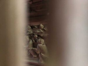 八幡神社御本殿背面胴羽目